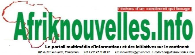afriknouvelles.info